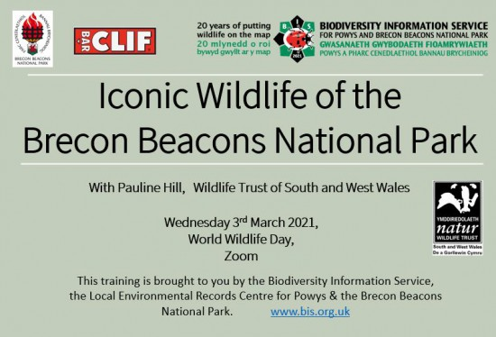 Iconic of the Brecon Beacons National Park event