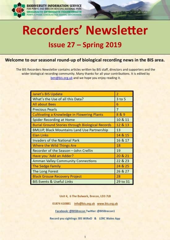 BIS Recorders Newsletter - Spring 2019