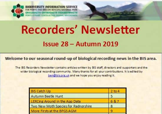 Recorders Newsletter Autumn 2019 issue 28