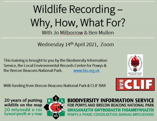 Wildlife Recording - How, Why, What For?